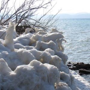 氷結の川の緩みや春ちかし