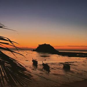 あの小島が邪魔で日の出が見えない。。。
