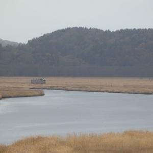 花咲線・糸魚沢駅から厚岸駅へ歩き、別寒辺牛湿原を散策