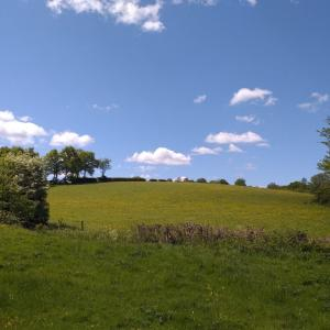 ケントの田舎風景