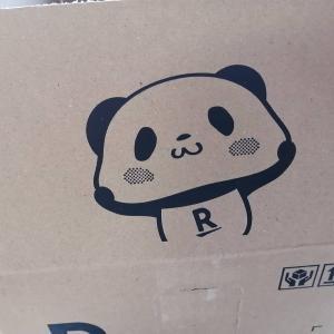 箱開けたらいた!かわいい〜 楽天パンダ