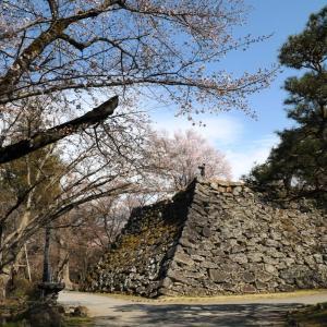 令和2年懐古園桜百景 6