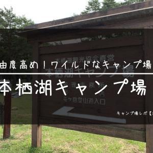 【山梨県】本栖湖キャンプ場レポ:自由度高め!ワイルドなキャンプ場!【前編】