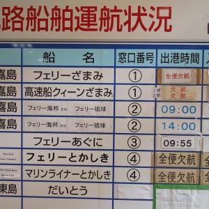 【島旅】日本最南端の島「波照間島」~島旅の恐さを知った旅~