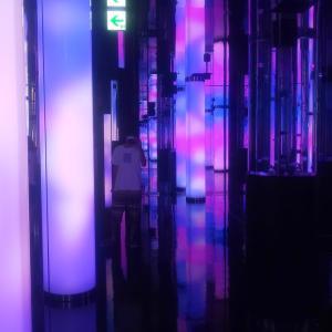 バーチャル水槽におしゃれな光の演出!DMMかりゆし水族館に行ってきた感想 | 旅行記その6