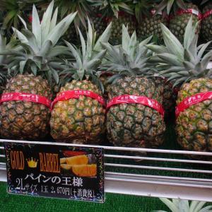 【沖縄ドライブ旅】ナゴパイナップルパークでパイナップルを試食・食べ比べ。お土産もワインも充実!~旅行記その9