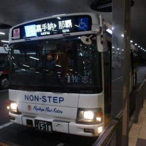 【路線バスで行く沖縄の旅】 辺士名から那覇バスターミナルへ!約15時間のバスの旅。元は取れたのか ~土日祝限定フリー乗車券 旅行記 最終話~