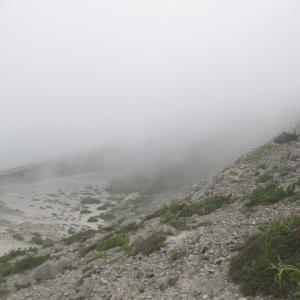 【神津島の旅】神津島の最高峰・天井山へ!山頂からは何も見えませんでした…|2018年 旅行記 その3