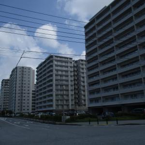 【豊見城市豊崎】理想の暮らしがここにあります。豊崎のマングローブと大和ハウスマンション~2020年旅行記その2