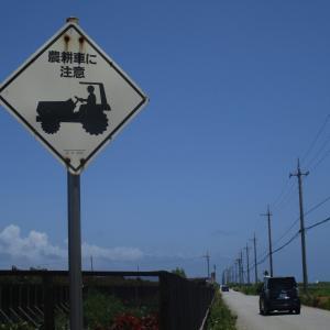 【原付で島旅】伊計島に広がる葉タバコ畑!農耕車が走る島。小麦の栽培も行われている。~ 2020年7月 与勝諸島を巡る旅 旅行記その4~