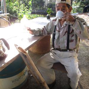 やんばるの森にある秘密の池と進化するおじぃのコーヒー農園カフェ。|「沖縄コーヒー農園にカフェを作ろう」2020年9月編 旅行記最終回