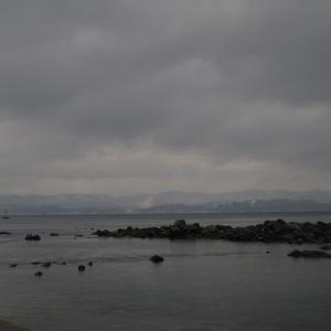 氷見温泉から雨が降っている雨晴海岸へ!   2020年→2021年 年末年始の旅 その51