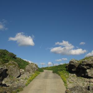 1周4kmの小宝島上陸!野宿の場所を探して島を巡る|2016年 トカラ列島旅行記 その11