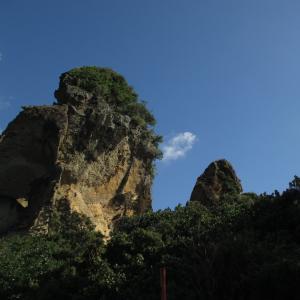 まるでグランドキャニオン!のどかでワイルドな小宝島を歩く|2016年 トカラ列島旅行記 その12