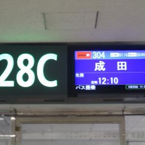 雨の沖縄から1年以上ぶりの東京へ!那覇空港→成田空港|2021年 御船印旅行記 その18