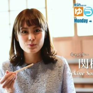 新潟放送 関根苑子アナが可愛い!気になる身長・カップ・大学は?