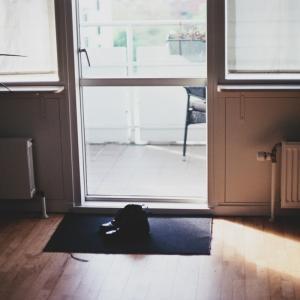 人間生活の中で、何をしている時が最も危険なのかについてそれは「自宅にいる時です」