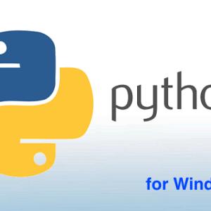 【世界一簡単】Pythonの環境構築+日本語化 for Windows10 (完全版)