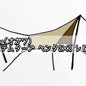 憧れの小川張りに挑戦!!ogawa(オガワ)システムタープ ペンタ3×3 レビュー