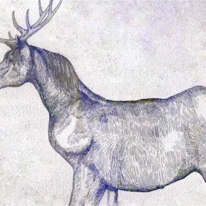 米津玄師「馬と鹿」の歌詞の意味から読み取る「馬鹿」という二つの意味を持つ言葉との関係性。
