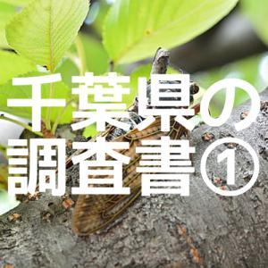 【最新版】これが千葉県の『調査書』です!①