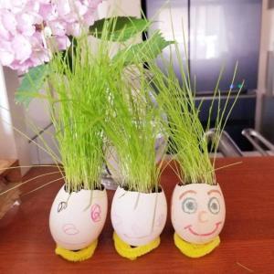 【DWE 5.1】Let's make an egghead!エッグヘッドを作りました。