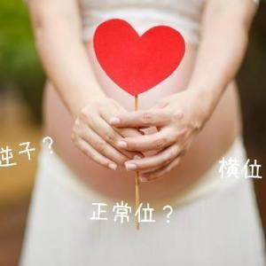 """臨月で逆子解消!胎動を感じる位置で""""逆子""""を見分けるコツ( *´艸`)"""