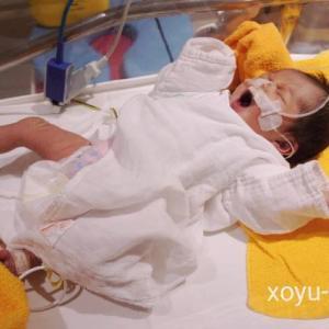 【産後5日目退院】CT検査の結果・GCU.一般小児への移動も…?