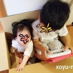 *4歳差兄妹の成長記録【4歳9ヶ月&0歳9ヶ月】2021年5月*