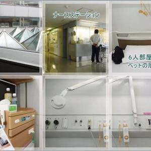 初めての大腸癌、内視鏡検査