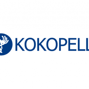 【IPO初値分析】ココペリ(4167) 初値予想は強気モードで初値上昇率プラス50%以上を期待 東証マザーズ 主幹事は大和証券