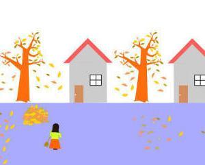 中古住宅など家を買う時に注意。周りに大きな木があると・・・