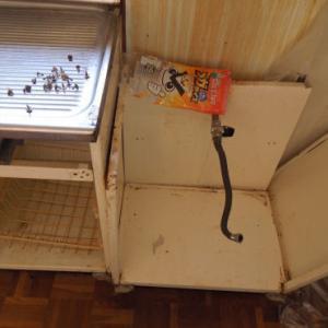 購入した中古住宅のカビ掃除