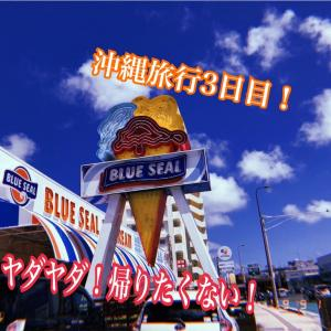 【沖縄旅行】帰りたくない!ずっと居たい!最高の旅 #3