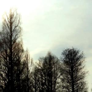 カリンニコフ/交響曲 第1番 ト短調  山田和樹指揮チェコ・フィルの溌剌とした音楽