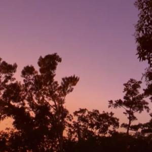 武満徹作詩・作曲「小さな空」 石牟礼道子作詩・佐藤岳晶作曲「アニマの鳥」 村松さんの声が沁みます