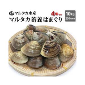 【送料無料】 【業務用】大人買い 蓄養はまぐり 4年もの 5cm~6cmサイズ蛤(ハマグリ) 10kg(250粒前後)入