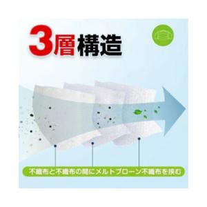 [数量限定 2-3日発送] マスク 50枚 価格:2980円 不織布マスク 大人用