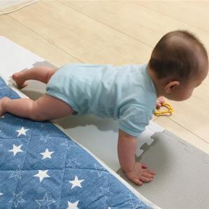 アスリートな6ヶ月児、総睡眠時間が8時間を切る。日中めちゃくちゃ活動してるんだけどなあ…!