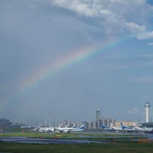 ニュース深掘り~羽田空港に虹がかかった~7月に新撮影スポット誕生