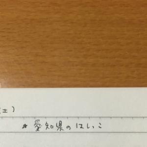 1月18日の夢 「愛知県のはしっこ」「長靴」「親子の鳥」