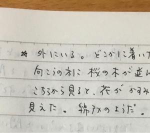 4月5日の夢 「桜」「松ちゃん」「兄」「◯松さん」「パン」