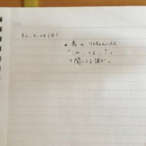 5月24日の夢 「リカちゃんハウス」
