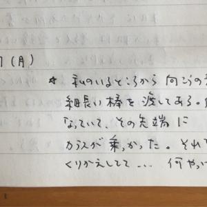 7月27日の夢 「カラス」
