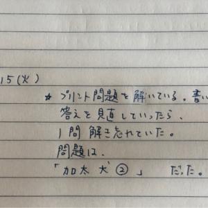 9月15日の夢 「加太 犬 ②」
