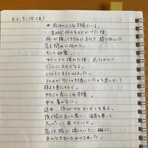 7月25日の夢 「地震」「島田紳助さん」「シャチ」
