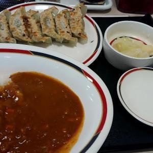 北海道 みよしの / 新メニュー 野菜ぎょうざ