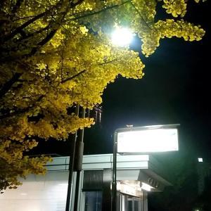 札幌市 中島公園 / 今月で今年度営業を終えるポロクルで