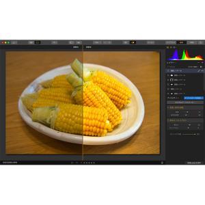 RAW現像ソフト Luminar 3 が無料で公開中なのでさっそく使ってみた