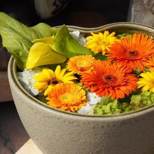 行田市「花手水week」を訪ねてきました (2):八幡通りは花でいっぱい【埼玉の花】